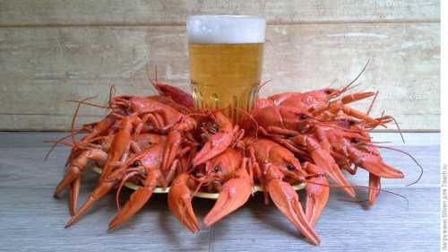 Как варить раков к пиву