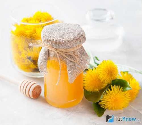 Мёд из одуванчиков: как готовить и применять,