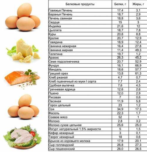 Какие продукты можно при белковой диете фото