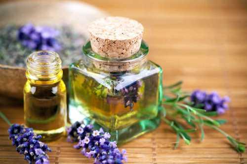 Эфирное масло лаванды и его свойства для красоты
